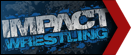 Impact wrestling small