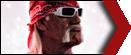 Hulk Hogan small